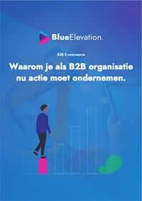 B2B-ecommerce whitepaper